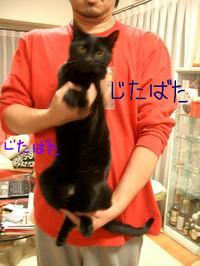 Photo_319